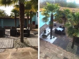 Diseño de terrazas con palmeras