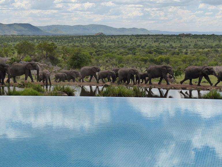 construcció de piscines en entorn natural